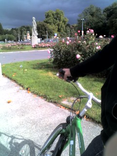 Geneve - Cycling! #02.jpg
